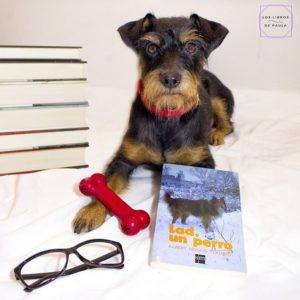 Lad, un perro, Albert Payson Terhune - Instagram loslibrosdepaula